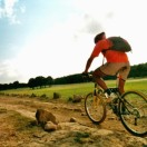 Ceda bici