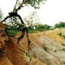 Problematica erosion